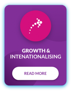 our_offering_growth_internationalising